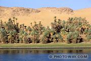 Fond d'écran vallée du Nil en Egypte