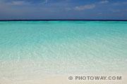 Fonds d'écran Rivage de l'Océan Indien aux Maldives
