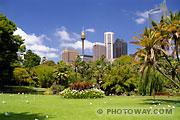 Fond d'écran jardins Botaniques à Sydney