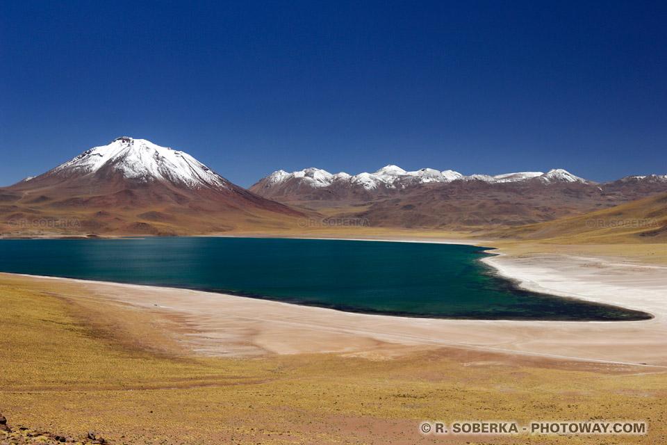 Lagune Miscanti - Cordillère des Andes