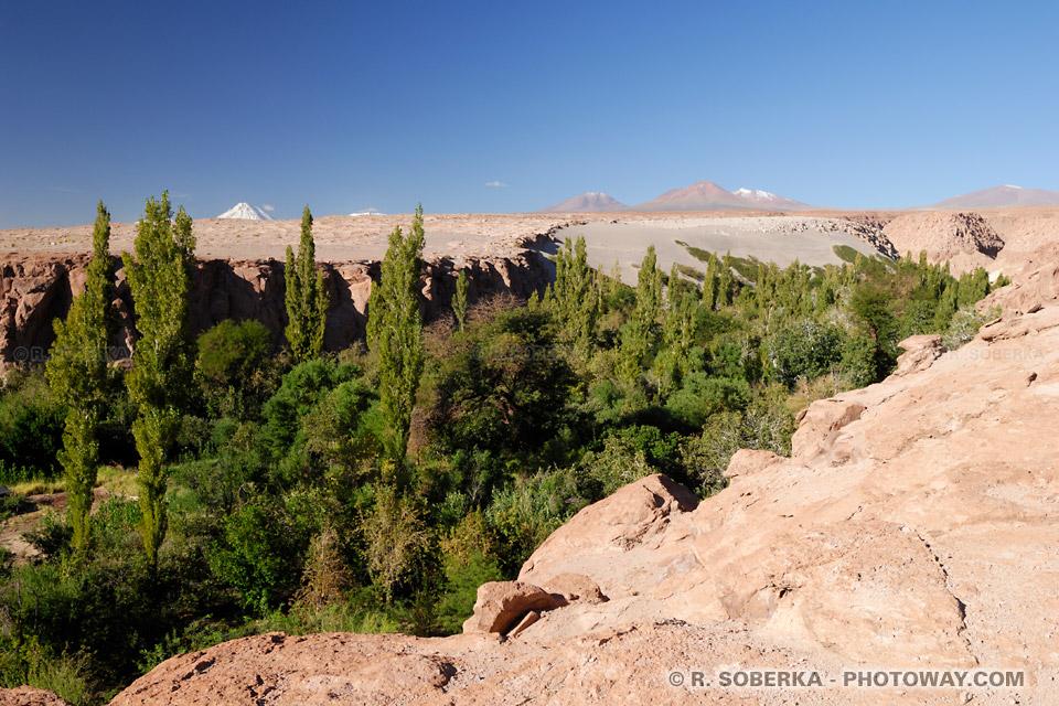 Quebrada de Jerez de Toconao au Chili