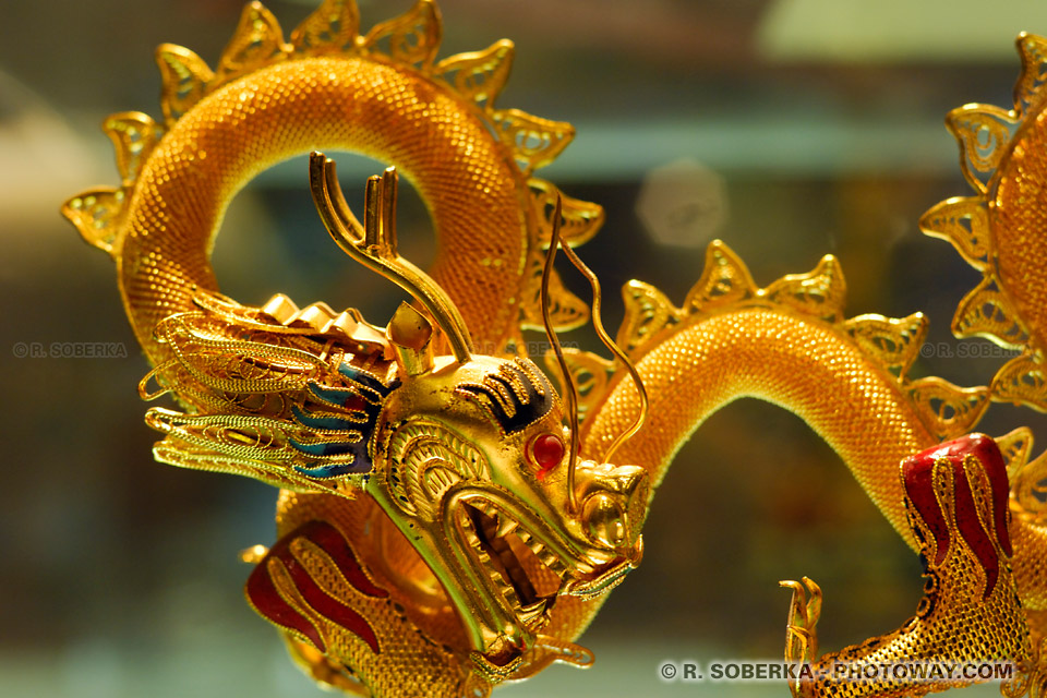 Photo d 39 un dragon chinois dor photos de dragons chinois - Images de dragons ...