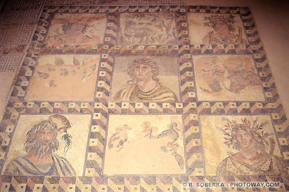 Images et Photos de mosaïques romaines photo de Paphos visite archéologique