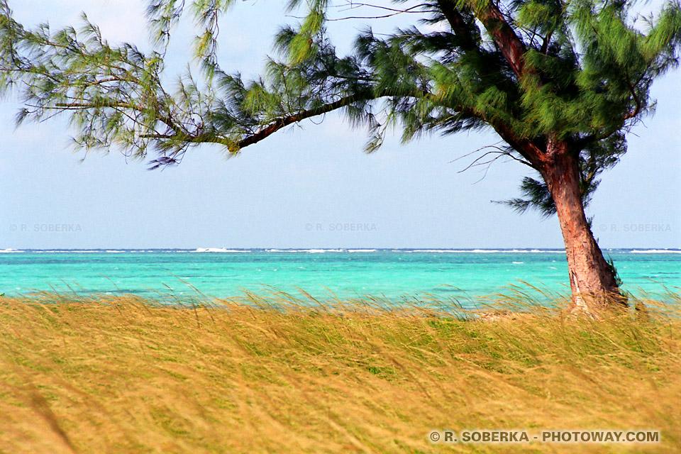 image Photos de la côte Atlantique de Cuba photo barrière de corail à Cuba