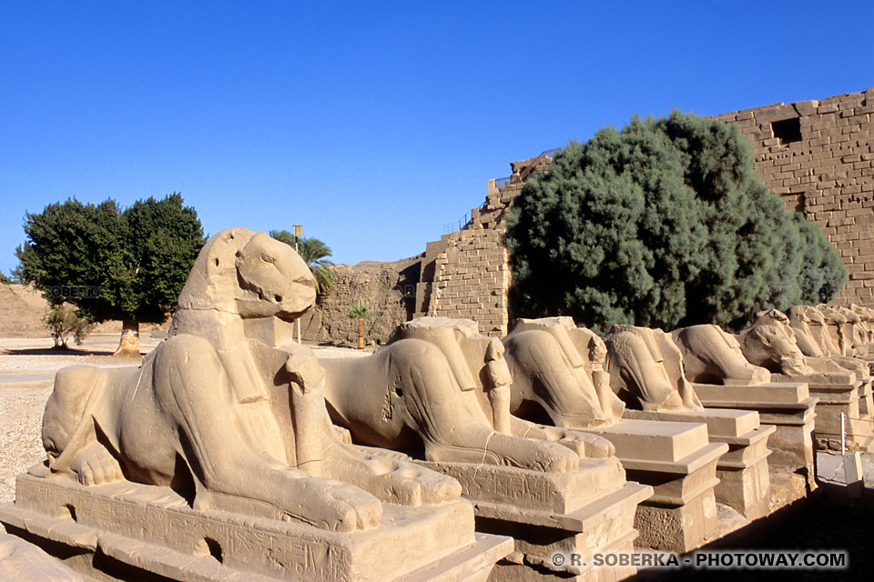 Image du Sphinx images allée de Sphinx photos de Karnak en Egypte
