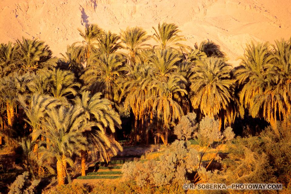 Photos de croisière sur le Nil photo de vacances en Egypte