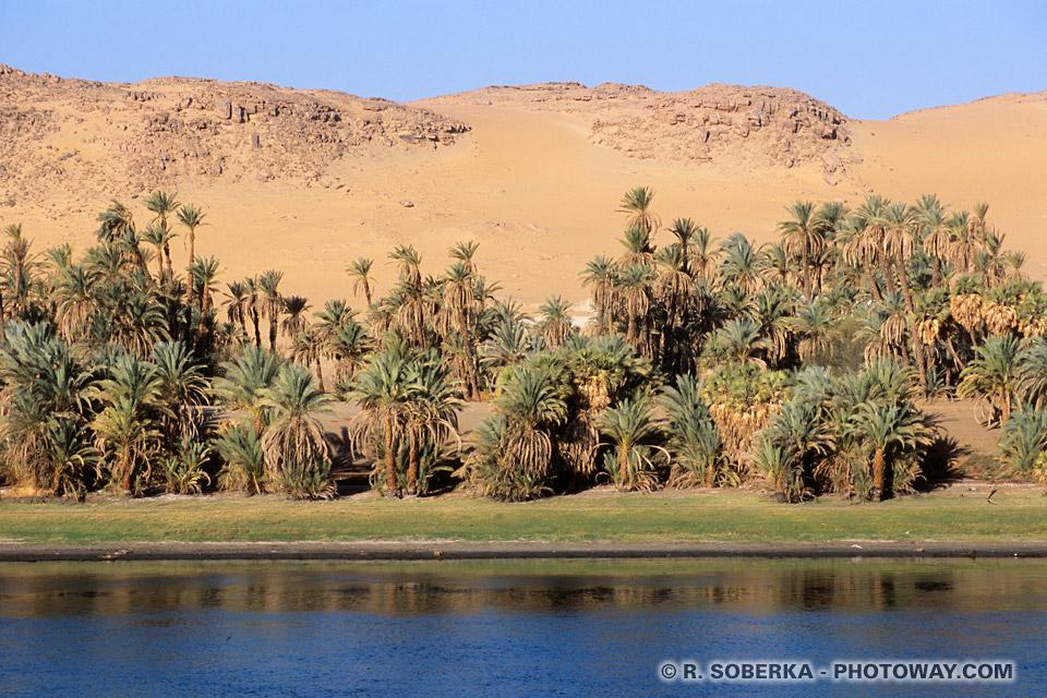 Fond d'écran du Nil en Egypte fonds d'écran dunes et palmiers