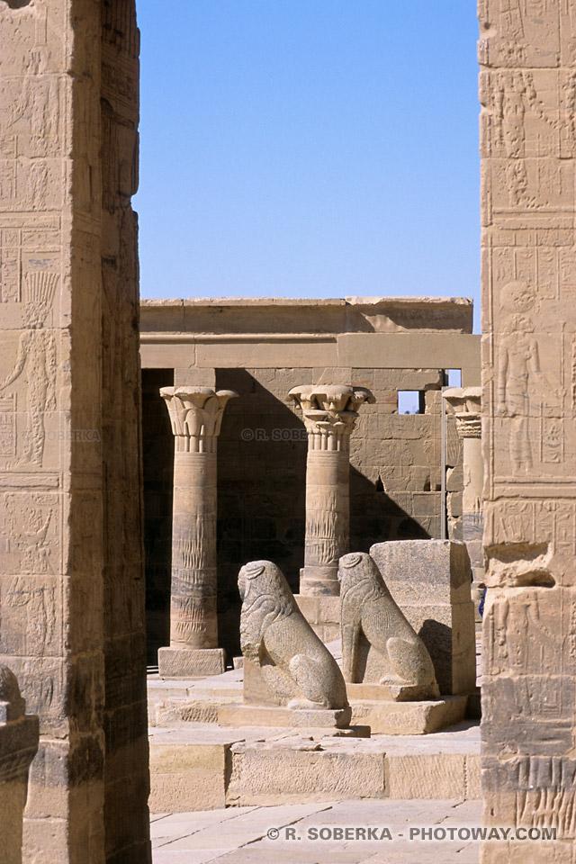 Photos des statues de lions photo de statues du temple de Philae en Egypte
