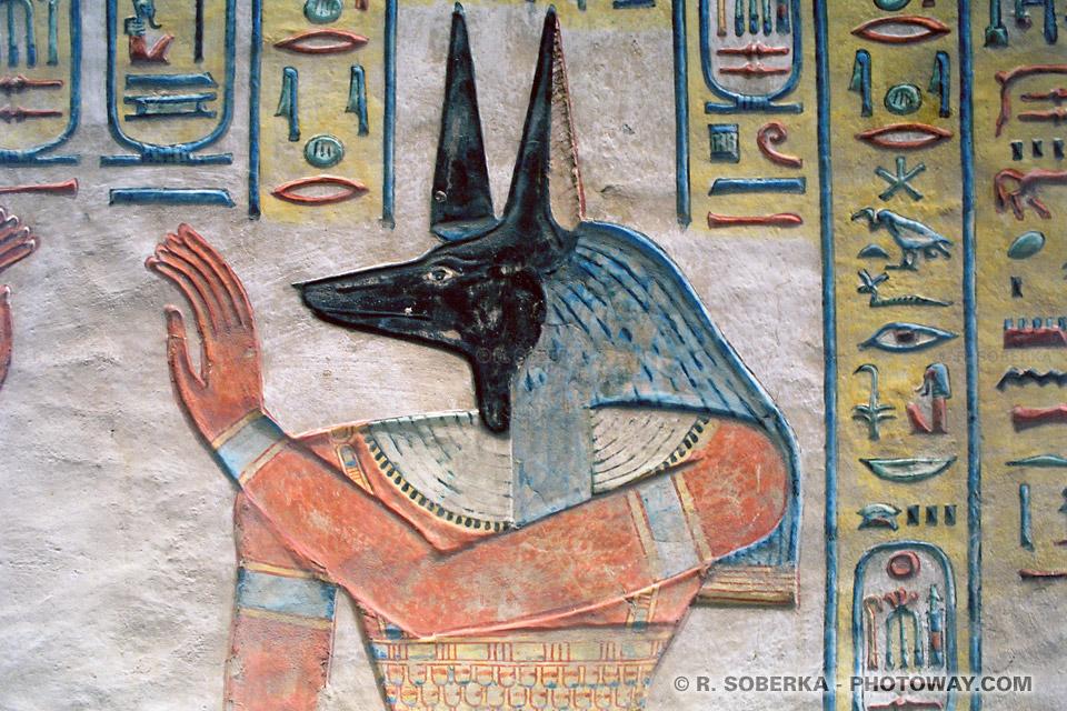 image Photos d'Anubis photo du dieu égyptien Anubis images en Egypte