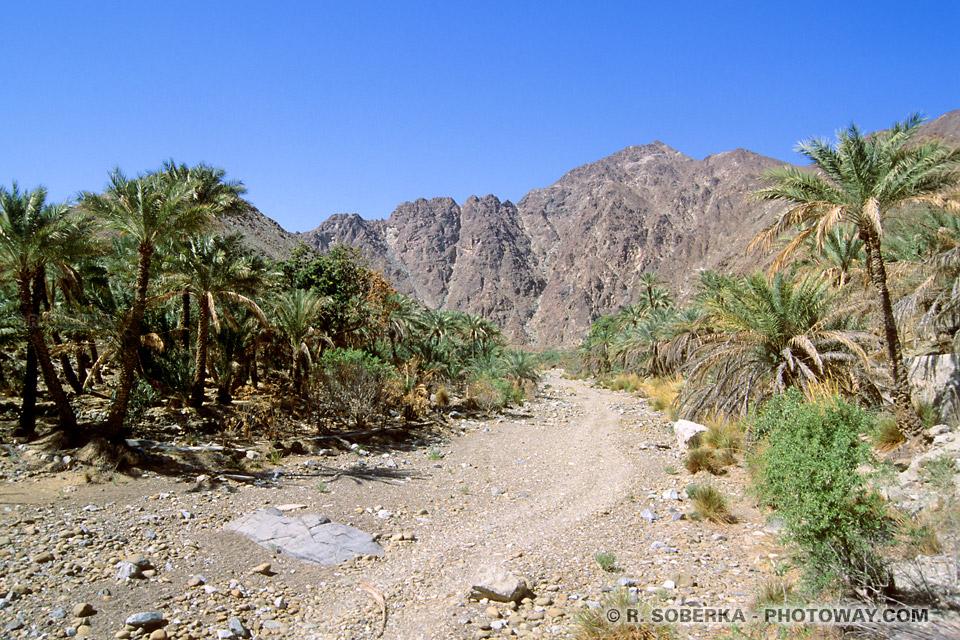 Image Photos d'enclaves photo de l'enclave territoriale de Madha Oman