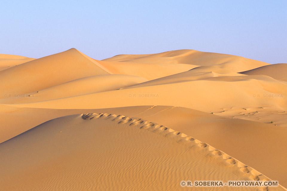 Image Marche à pied dans le désert photo trace de pas dans sable du désert