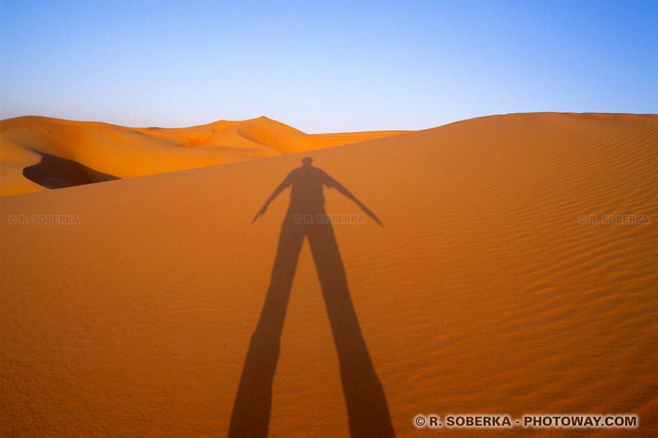 Image Photo du spectacle de la nature photos d'un périple dans le désert