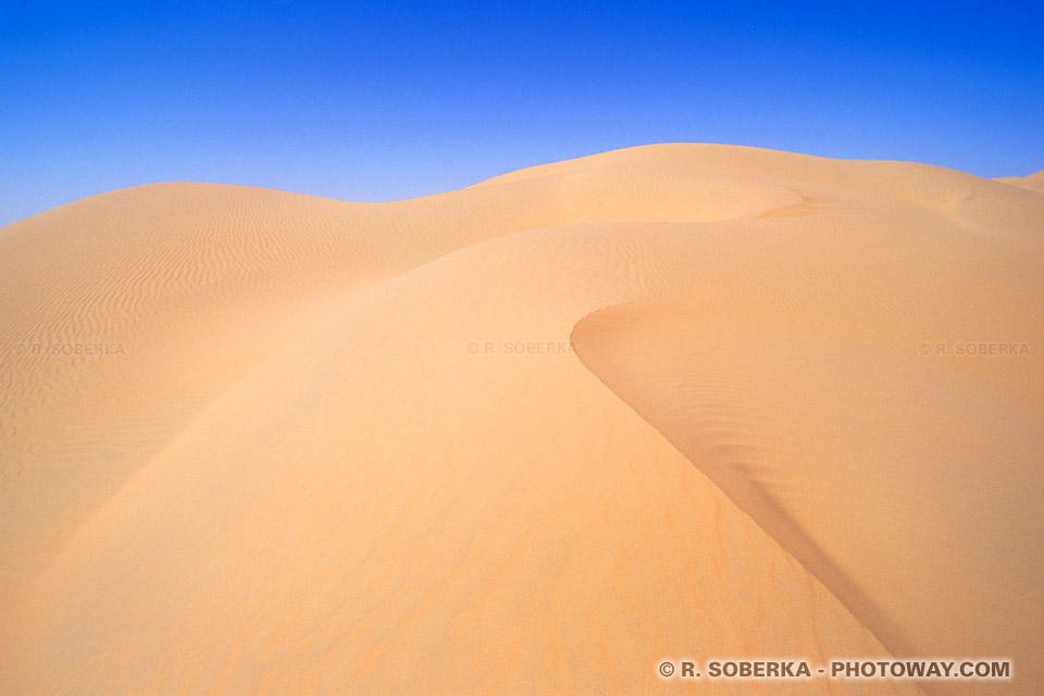 Image dune images de dunes dans le désert des Emirats Arabes
