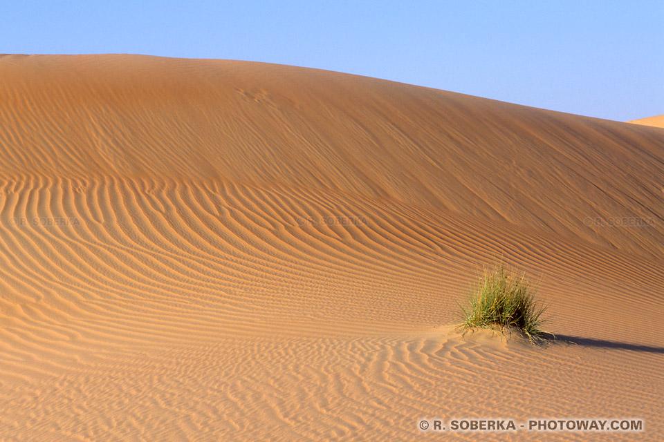 Image Photo ombre et lumière photos d'ombres et lumières du désert