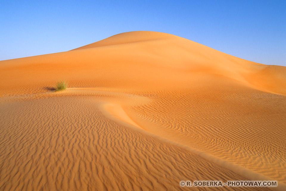 sable-desert