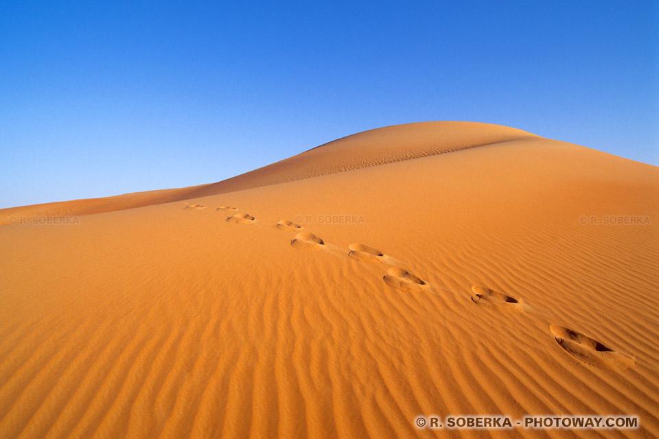 Image Aventures dans le désert photo de course contre la montre
