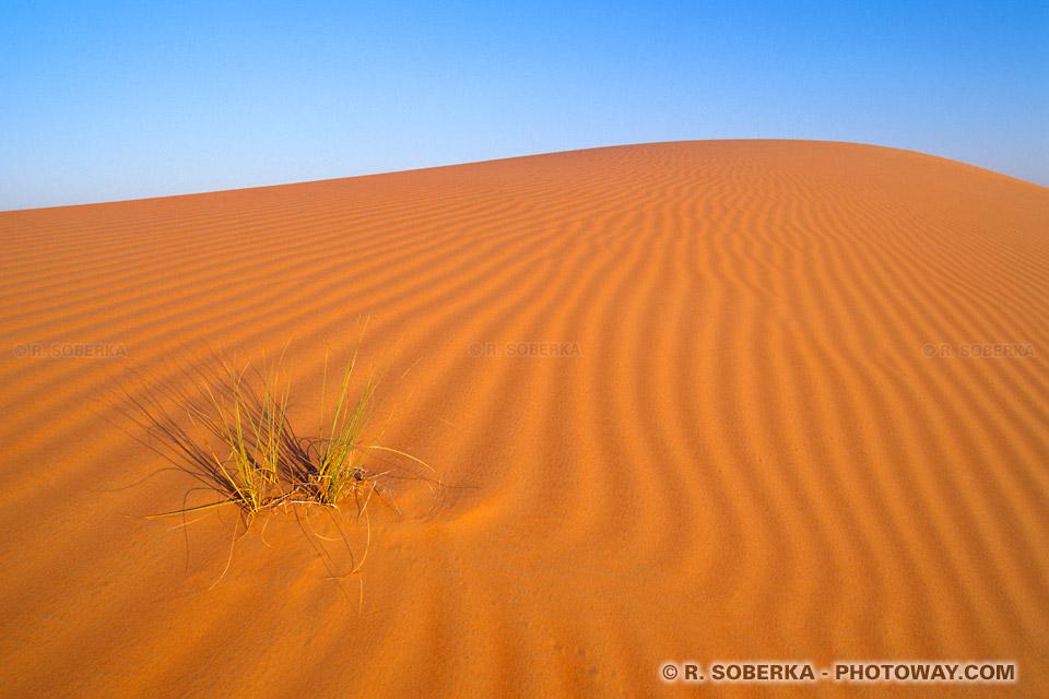 Fond d'écran dunes du désert aux Emirats Arabes Unis