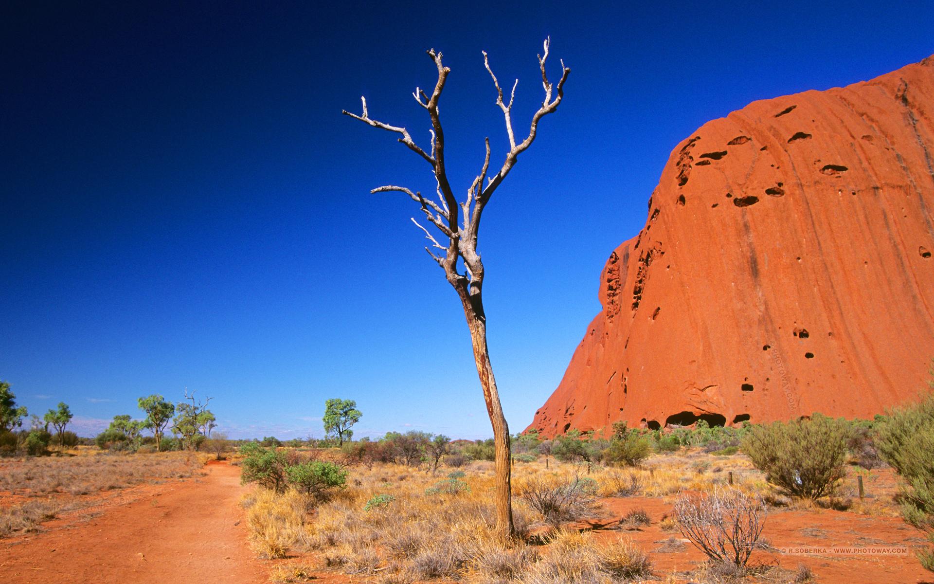 Fond d 39 cran d 39 ayers rock en australie wallpaper de d serts for Fond ecran 17 pouces