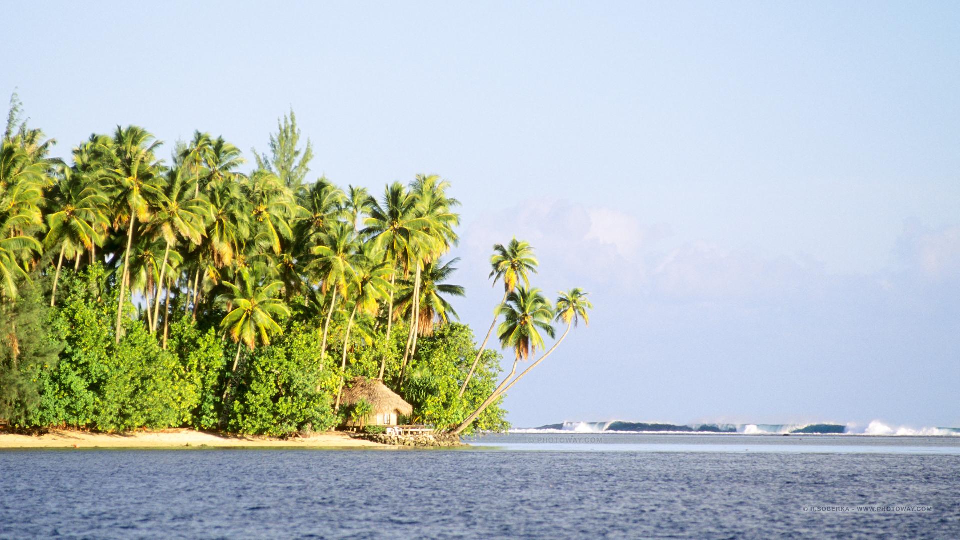 Fond d 39 cran de tahiti wallpaper fonds d 39 crans tahiti for Fond ecran 17 pouces