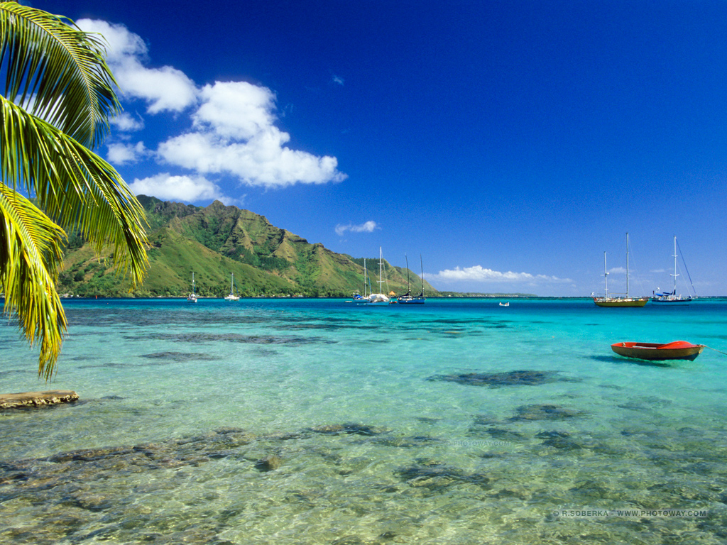 Fonds d 39 cran lagon wallpaper lagons de moorea en polyn sie for Photo fond ecran tablette