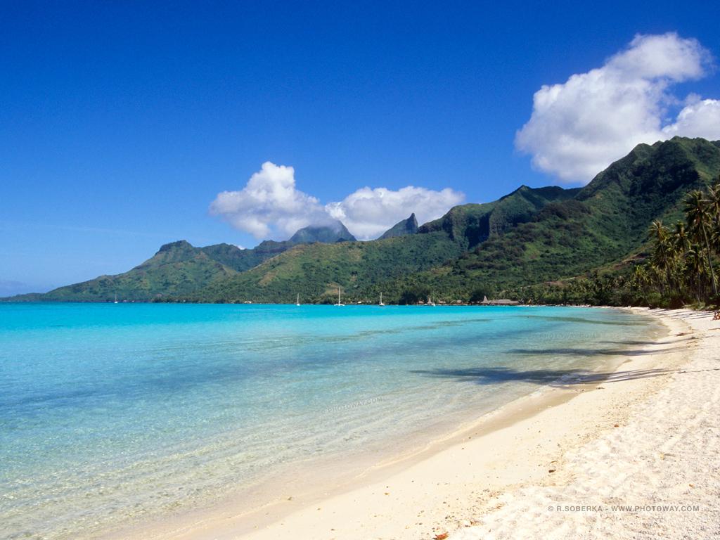 Fond d 39 cran de plage fonds d 39 cran plages wallpaper tahiti for Fond ecran 17 pouces