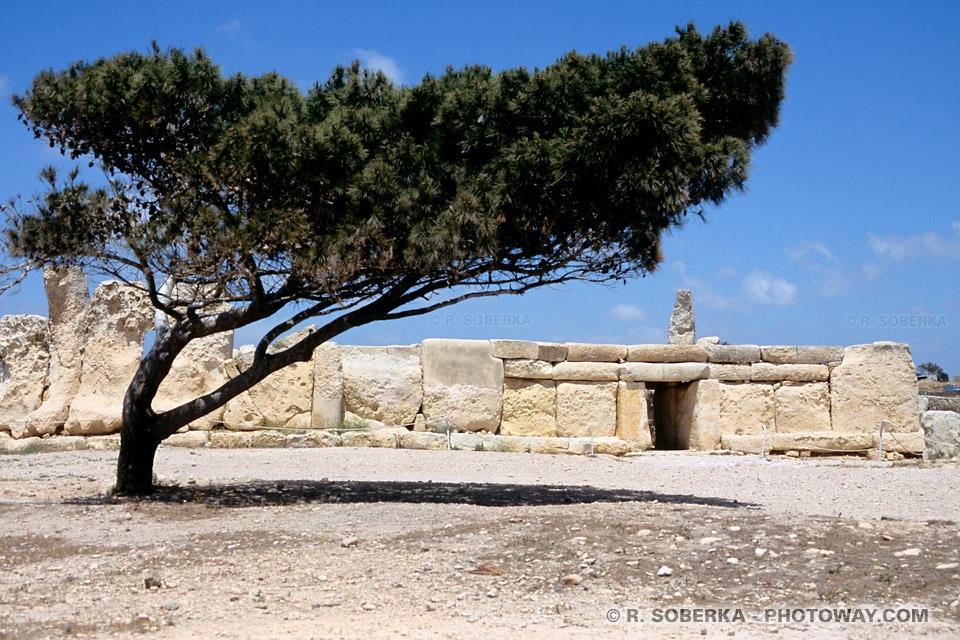 Hagar Qim inscrit au patrimoine mondial de L'UNESCO