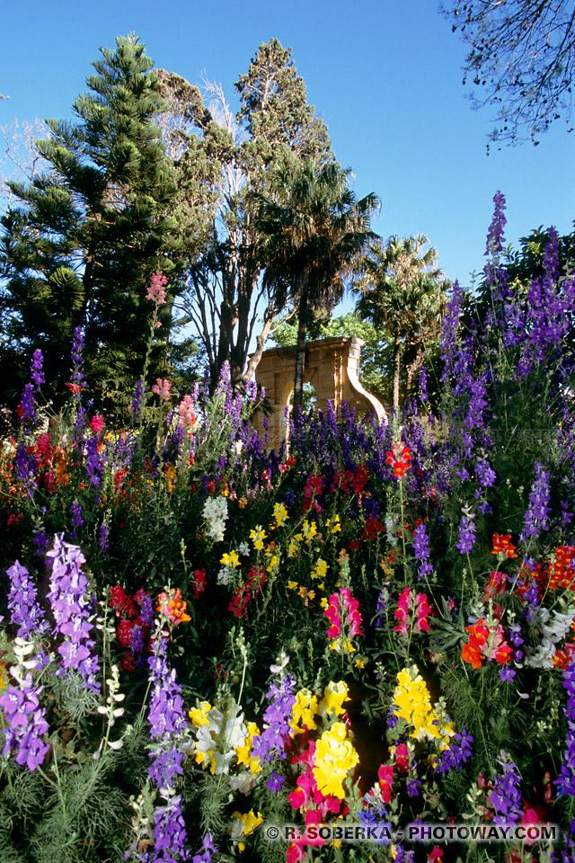 Photos de Vacances à Malte Visite des San Anton Gardens d'Attard à Malte