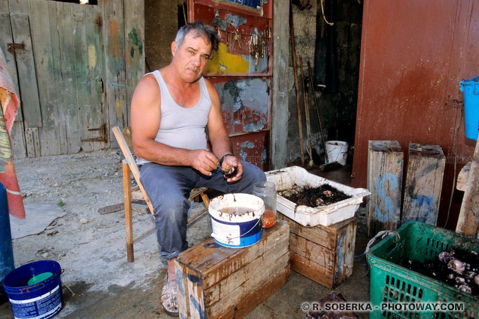 Images Photos oursins photos d'oursins photo dans les mains d'un pêcheur