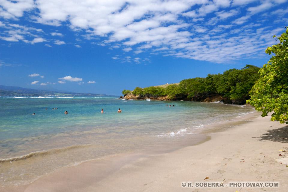 presqu'île de la Caravelle photo Anse l'Etang