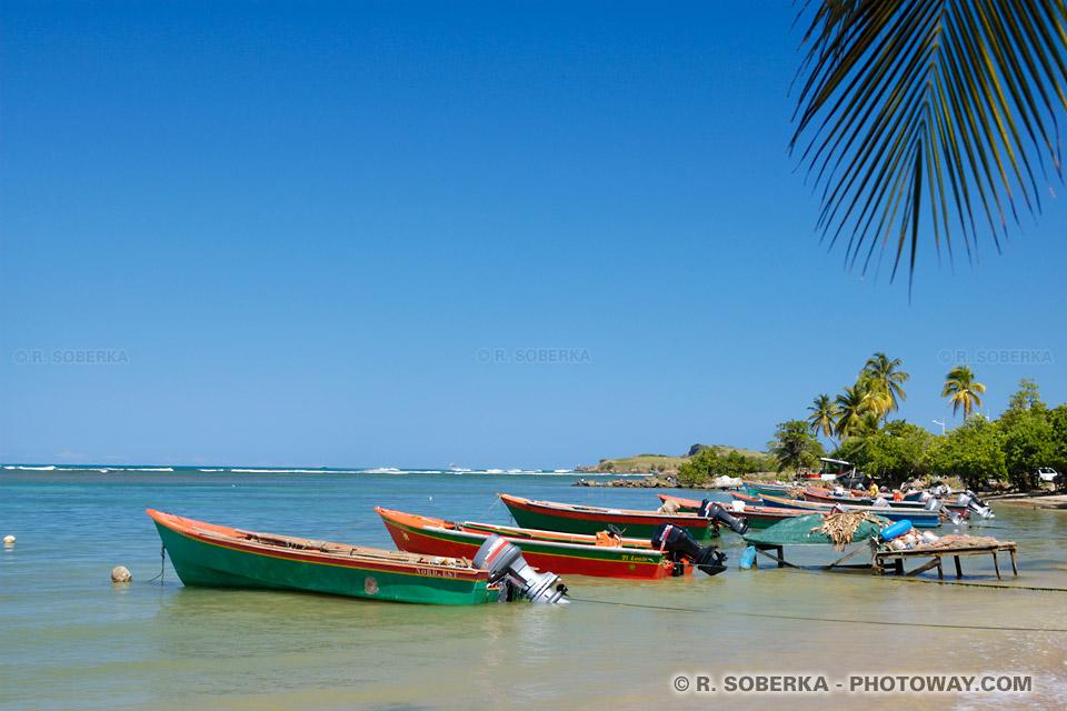 Tartane en Martinique