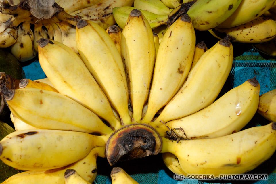 """Résultat de recherche d'images pour """"La banane figue"""""""