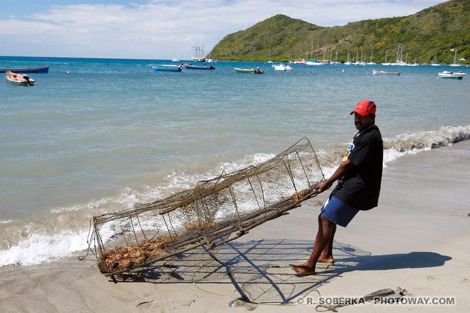 langoustes et crustacés - casier de pêcheur
