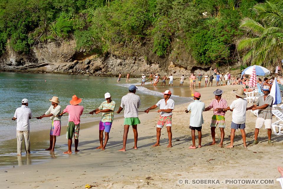 pêche à la senne en Martinique