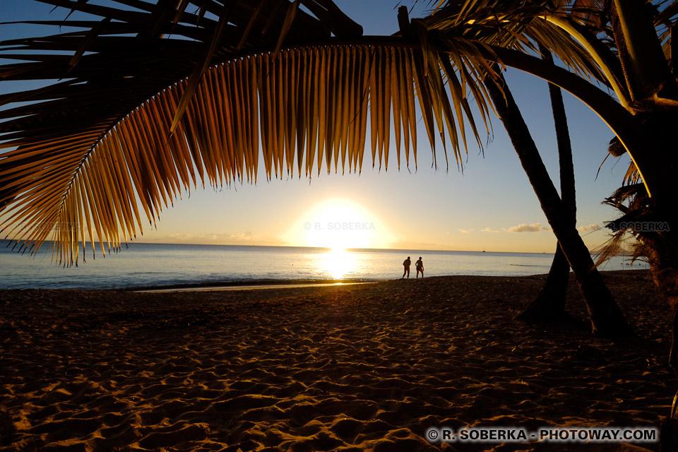 coucher de soleil plage des Salines en Martinique