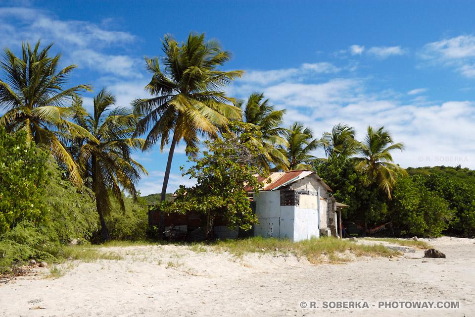 cabane de Robinson Crusoe