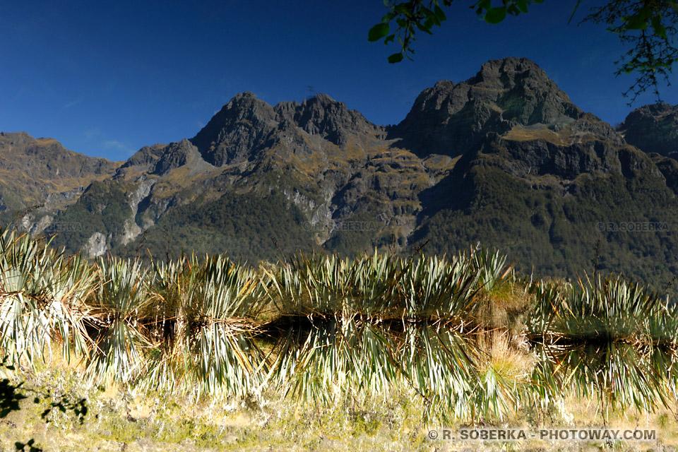CONCOURS ETE 2010 NZEL06_615r-lac-mirroir
