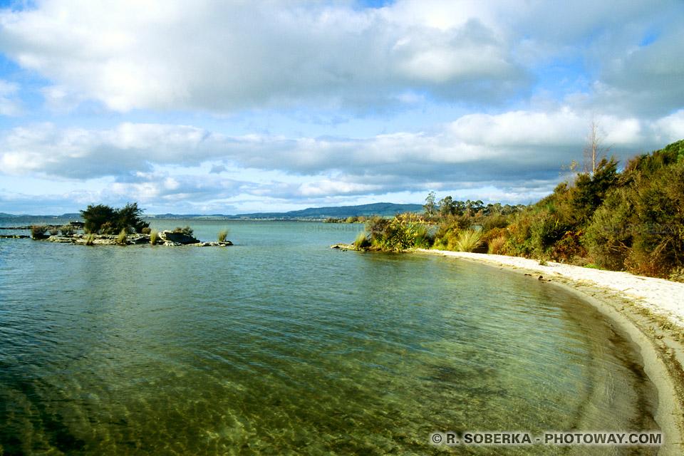 Photos eaux limpides : photo de l'eau limpide du lac de Roturoa en Nouvelle-Zélande