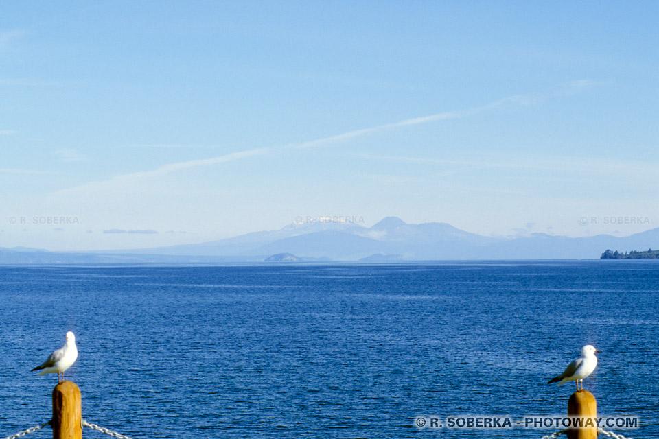 Photos du Lac Taupo : Photo du plus grand des lacs de Nouvelle-Zélande