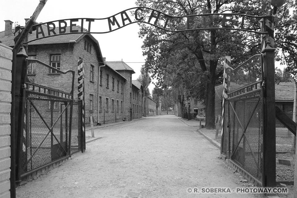ARBEIT MACHT FREI Auschwitz