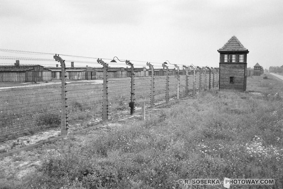Miradors camps de concentration