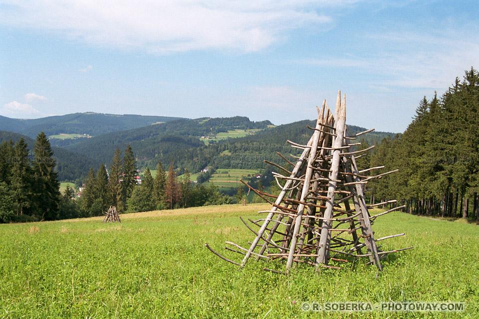 Images Photos de pâturages verts photo reportage guides voyages en Pologne