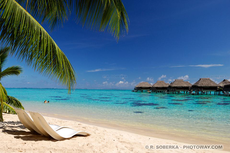 Fond d'écran de vacances wallpaper vacances en Polynésie