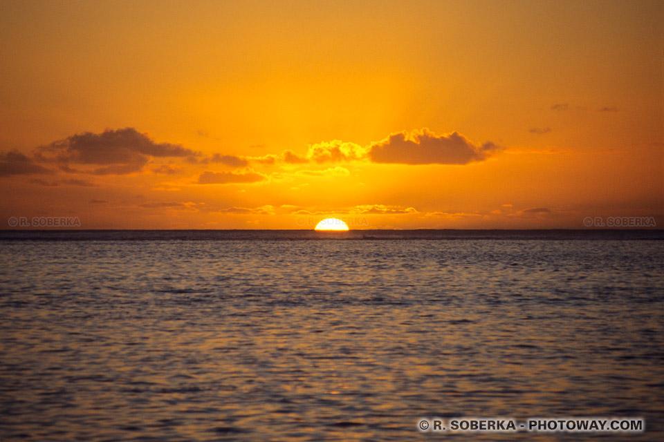 Photos de la nature sauvage des îles du pacifique photo de Moorea