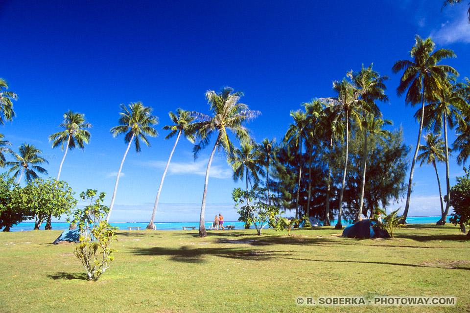 Photos du Camping chez Nelson et Josiane à Moorea - Tahiti en Polynésie