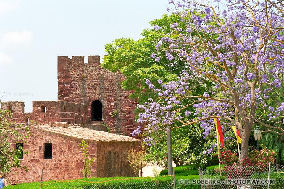 Photos de forteresses photo Al Hamara guide à Silves au Portugal