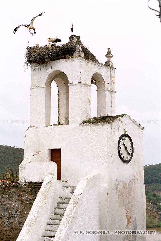 Photos de cigognes photo d'une cigogne dans le clocher de Mertola au Portugal