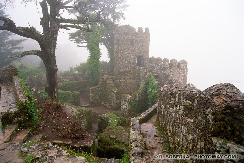 Photos de Sintra visite photo du Chateau dans le brouillard au Portugal