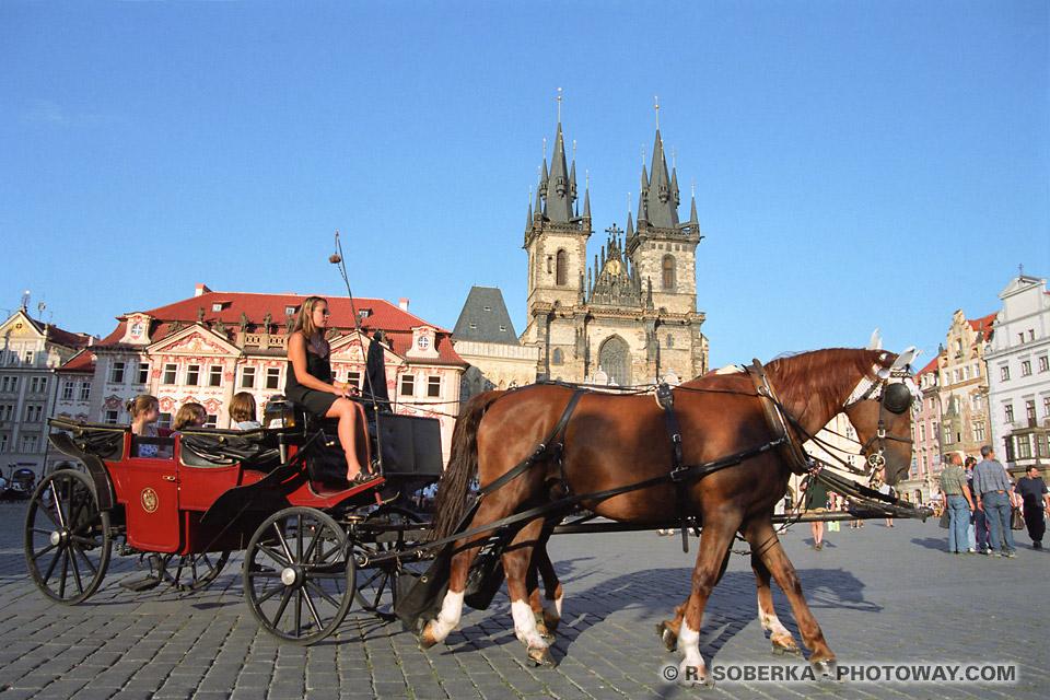 Guide Prague guide touristique à Pargue en République Tchèque