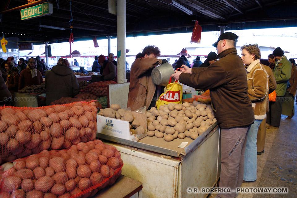Image Photo de pommes de terre photos de pommes de terre en Roumanie