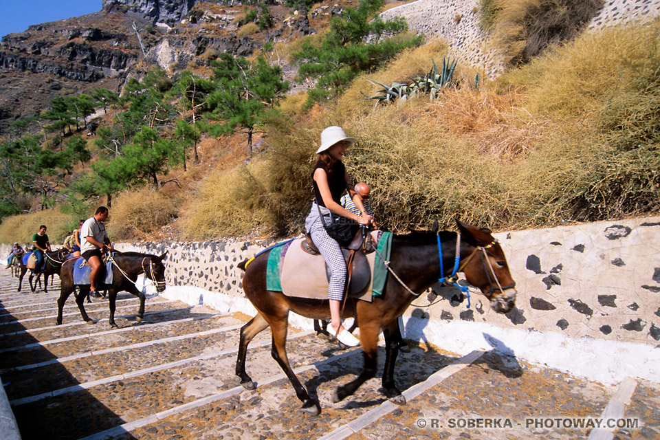 Touristes Japonais à Santorin
